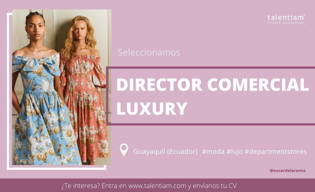 oportunidad profesional director comercial luxury